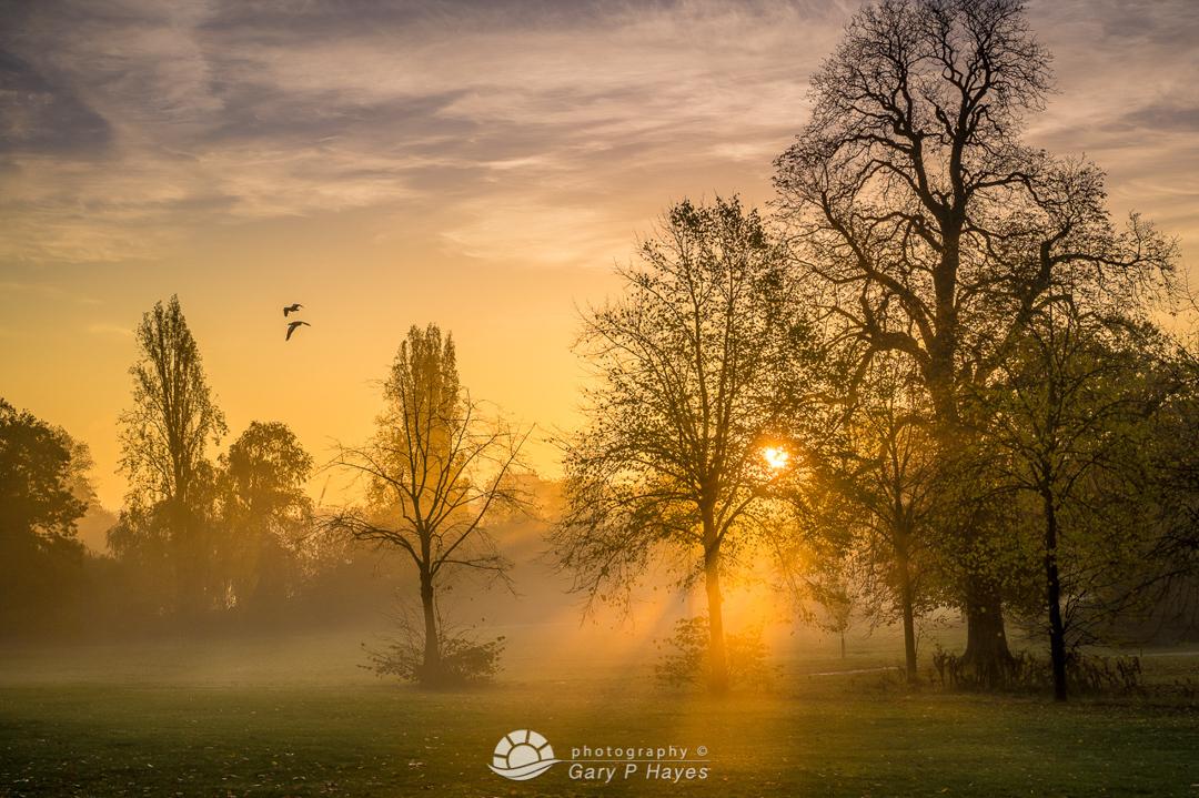 Parklife Kensington Gardens Dawn