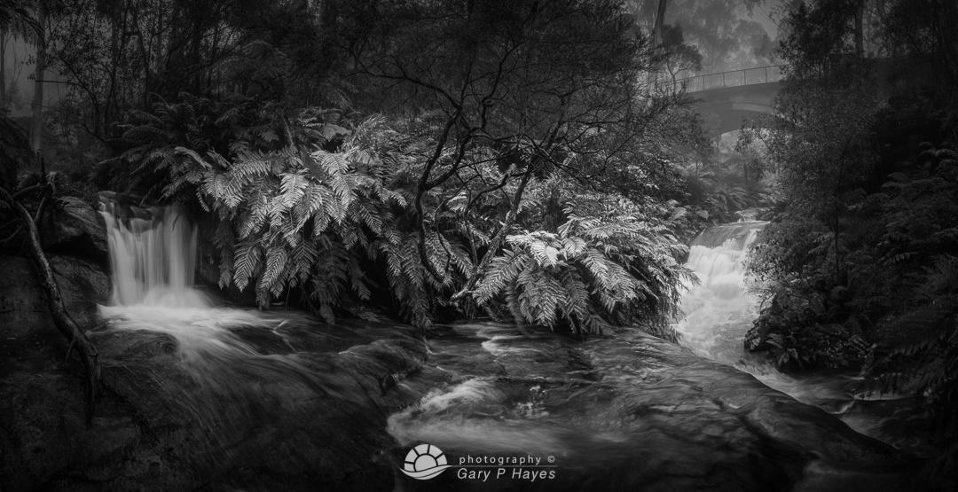 Dual Falls Leura Cascades