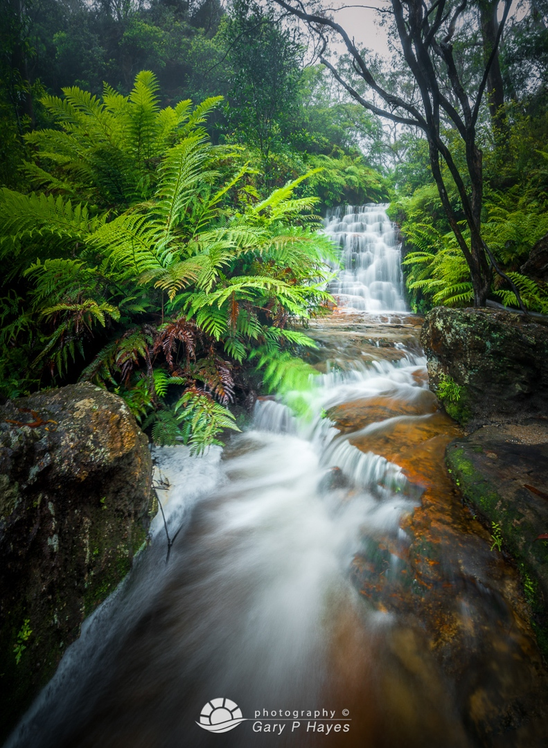 Side Falls at Wentworth Falls