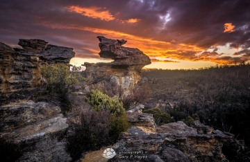 From Newnes Plateau