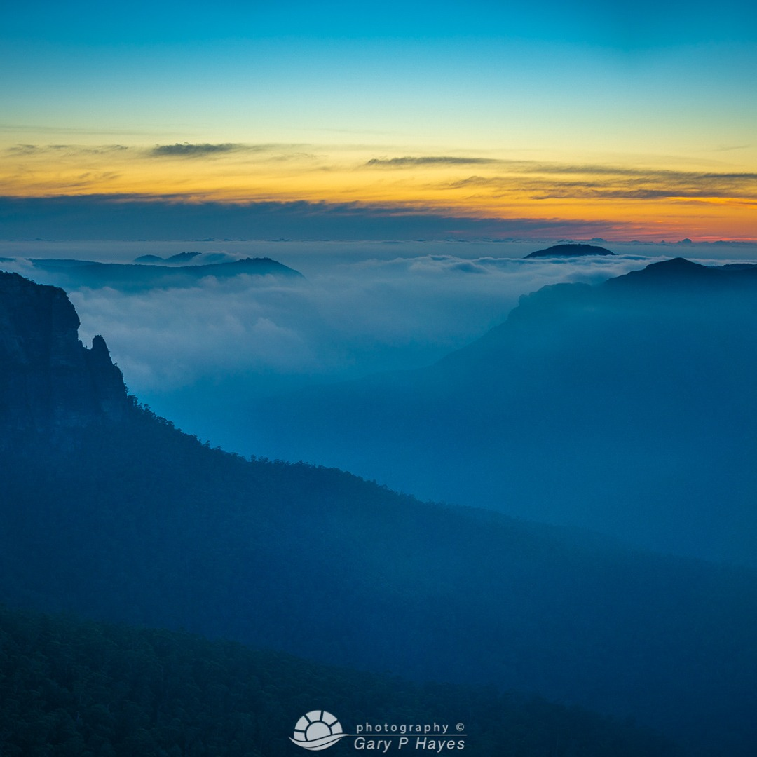 Blue Grose Sunrise