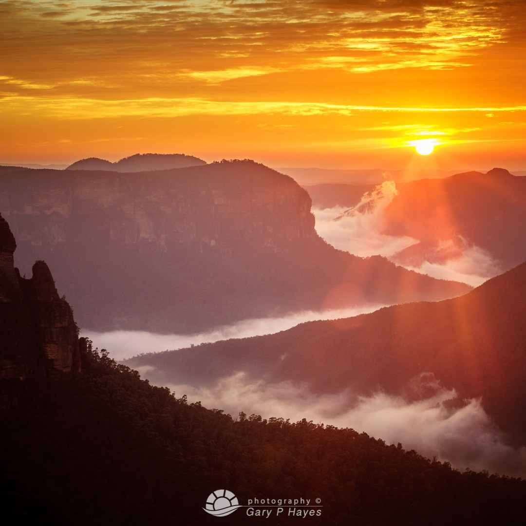 Rising Mist Grose