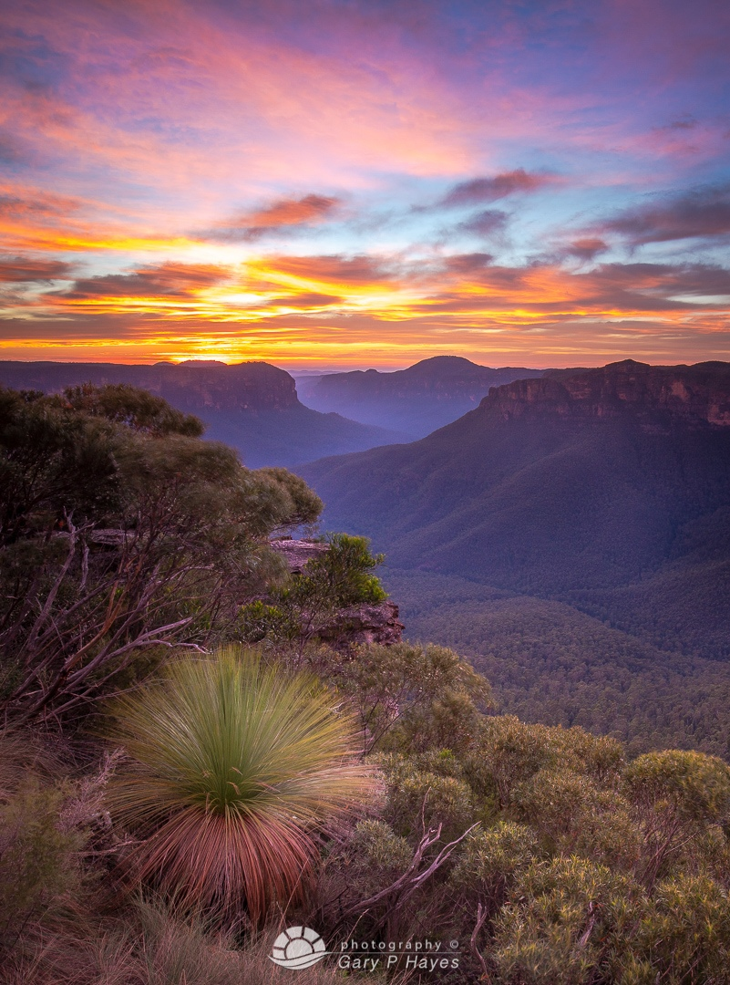 Grose Valley Pulpit Dawn I