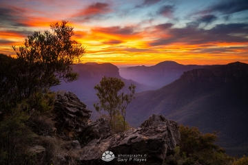 Grose-Valley-Pulpit-Dawn-II