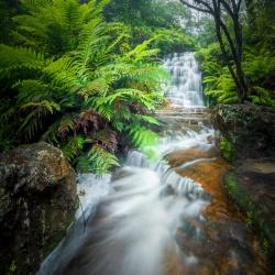 Wild Waterfalls Workshop