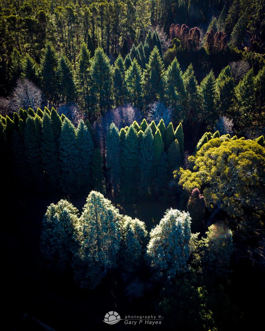 Backlight-Aerial-Mt-Wilson-1280px