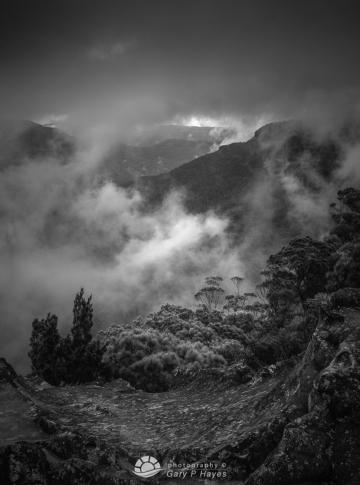 Pathway Mist Princes Rock