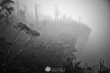 Katoomba Escarpment II