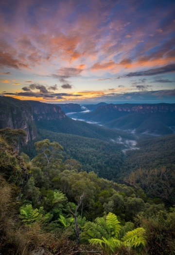 Grose Valley Dawn II