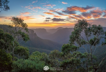 Grose Valley Dawn XXI