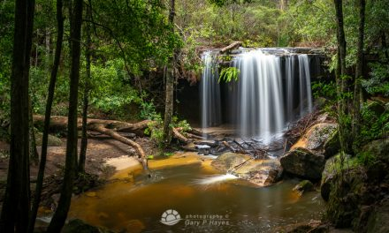 North Hazelbrook Waterfall Loop – Grade 3