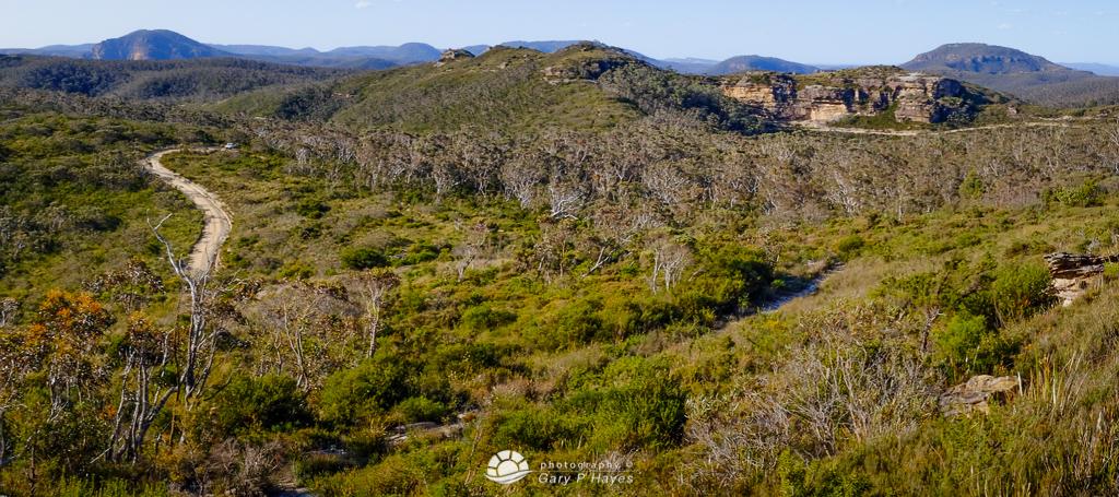 Flat Top LO Mount Hay – Grade 3