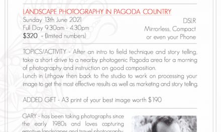 Pagoda Country Photography Presentation and Photo Workshop Booking